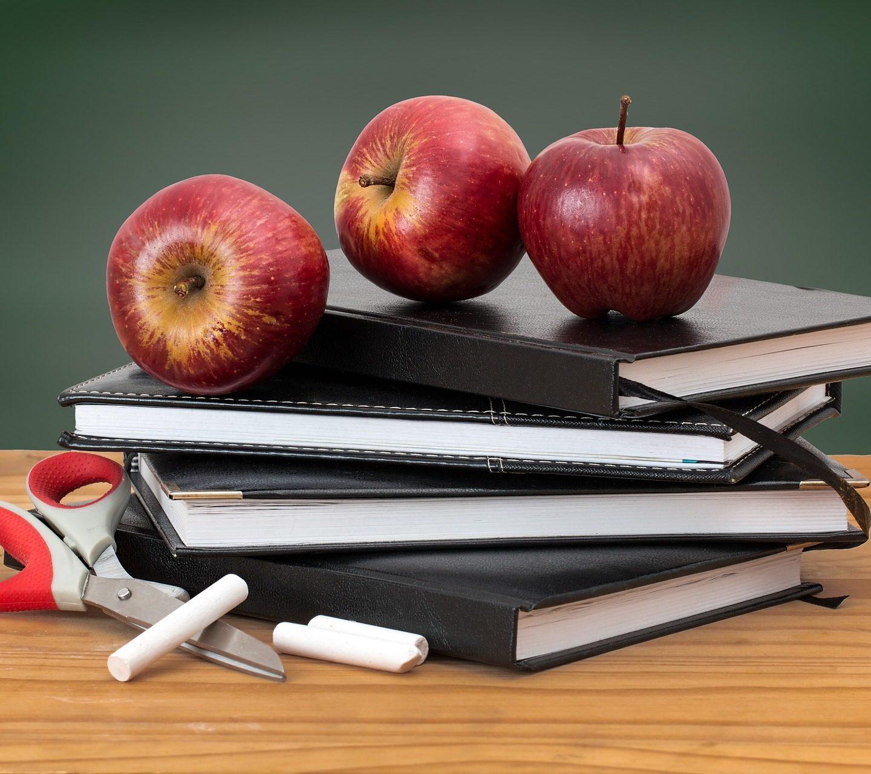 Organizace konce školního roku 2019/2020